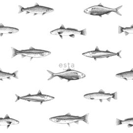 Zwart wit behang met Vissen 138967