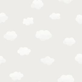 Cloudy Sky 90990  Grijs