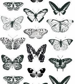 Onszelf Vlinderbehang zwart wit OZ 3261