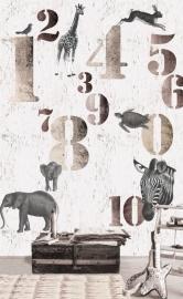 Onszelf Poster Cijfers met Safari beesten  OZ 3171