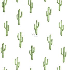 Esta Greenhouse Kleine woestijn cactus tropisch jungle groen  138899