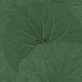 Esta Home Jungle Fever behang Grote Bladeren 138996