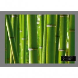 Dutch Wallcoverings Fotobehang Bamboe