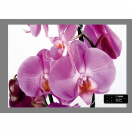 Dutch Wallcoverings Fotobehang Paarse Orchideeën