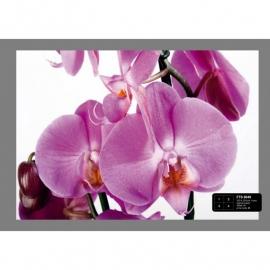 Dutch Wallcoverings Fotobehang Paarse Orchideeën
