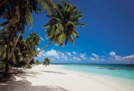 19. Komar Fotobehang Maledives 8-240