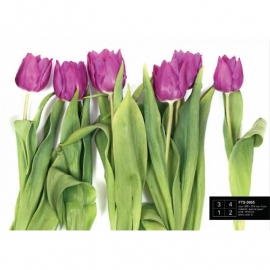 Dutch Wallcoverings Fotobehang Paarse Tulpen