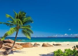 47. Komar Fotobehang Seychellen 8-006