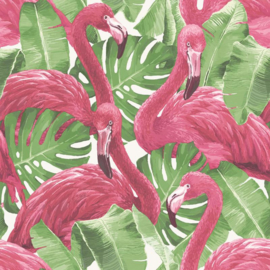 Noordwand Global Fusion Flamingo behang 6406