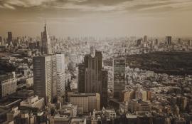 Dutch Fotobehang  Tokyo Vintage Brown