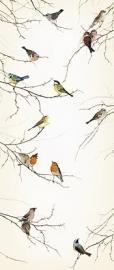 51. Komar Fotobehang Birds 2-1014
