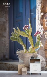 Cabana Poster Cactus 158610