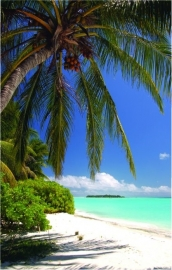 602 Dutch DigiWalls Fotobehang 70024 Tropisch strand