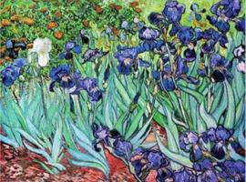 D-Toys Vincent van Gogh - Iris - 1000 stukjes