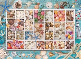 Eurographics 5529 - Seashell Collection - 1000 stukjes