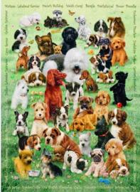 Cobble Hill - Puppy Love - 350XXL stukjes