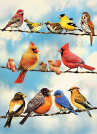 Cobble Hill - Blue Sky Birds - 35 stukjes