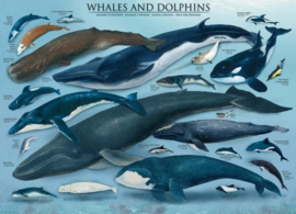 Eurographics 0082 - Whales & Dolphins - 1000 stukjes