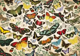 Jumbo -  Vinder Poster - 1000 stukjes