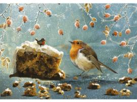 Otter House - Christmas Robin - 500 stukjes