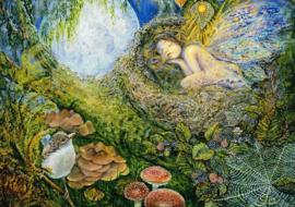 Grafika Josephine Wall - Fairy Nest - 1500 stukjes