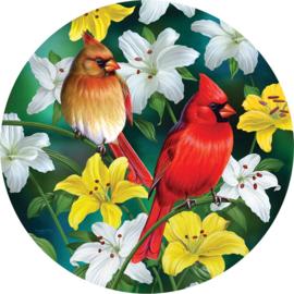 SunsOut 70965 - Cardinals in the Round - 500 stukjes