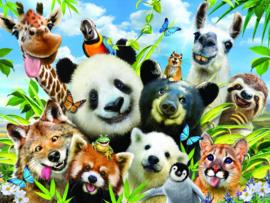 TFF 3D Image Puzzel - Llama Drama Selfie - 500 stukjes