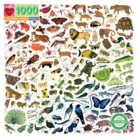eeBoo - a Rainbow World - 1000 stukjes