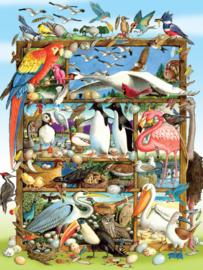Cobble Hill - Birds of the World - 350XXL stukjes