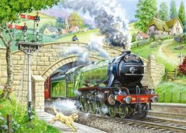 House of Puzzles - Train Spotting - 250XL stukjes