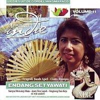 Heimwee naar Indie  deel11  cd
