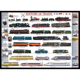 Eurographics 0251 - History of Trains - 1000 stukjes