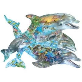 SunsOut 95264 Song of the Dolphins 1000 stukjes Vormpuzzel