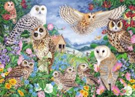 Falcon de Luxe 11286 - Owls in the Wood - 1000 stukjes