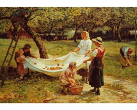 Wentworth - The Apple Gatherers - 40 stukjes  (Frederick Morgan)