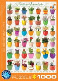 Eurographics 0654 - Cacti & Succulents - 1000 stukjes