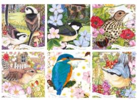 Otter House - Garden Birds - 1000 stukjes