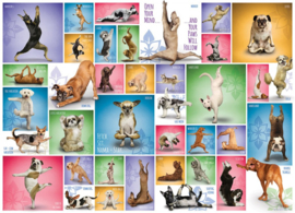 Eurographics - Yoga Dogs - 1000 stukjes