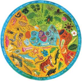 eeBoo - Biodiversity - 500 stukjes