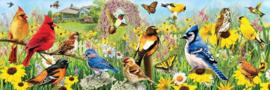 Eurographics - Garden Birds - 1000 stukjes