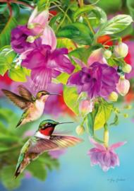 Piatnik - Hummingbirds - 1000 stukjes