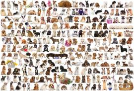 Eurographics 0581 - World of Dogs - 2000 stukjes