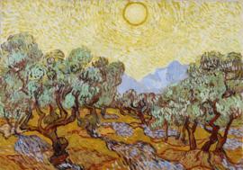Grafika Vincent van Gogh - Olive Trees - 1000 stukjes