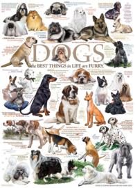 Cobble Hill - Honden - 1000 stukjes