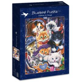 Bluebird - Kittens in Closet - 1000 stukjes