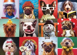 Eurographics - Funny Dogs - 1000 stukjes