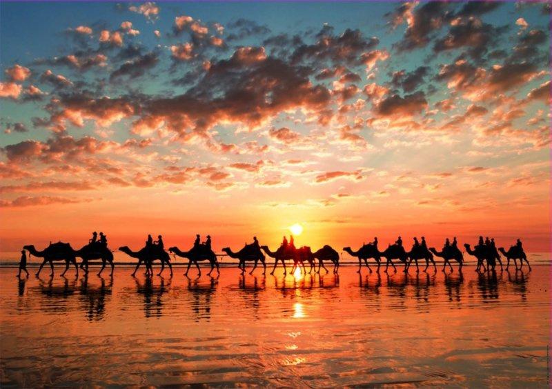 Educa - Gouden Zonsondergang op Cable Beach, Australia - 1000 stukjes