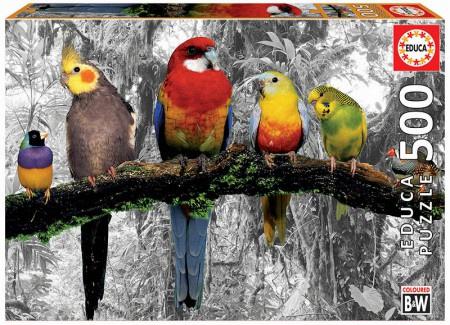 Educa - Birds in the Jungle - 500 stukjes