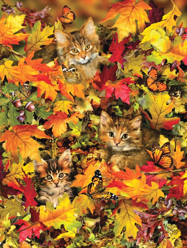 SunsOut 35059 - Kitties at Play - 300XL stukjes