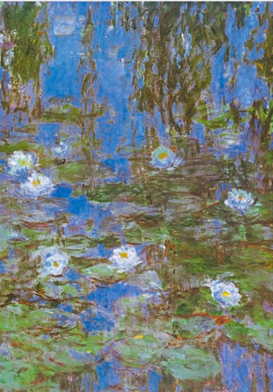 D-Toys Claude Monet - Nympheas - 1000 stukjes